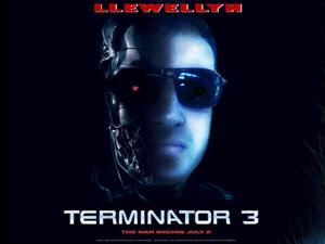 Ben Llewellyn - IT / Support